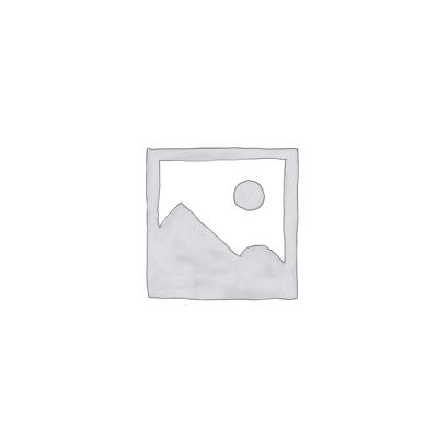 SBT/226.026<br/>Drukregelaar, waterafscheider en olienevelaar